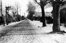Troškūnų gatvės grindinys - Nuotraukos autorius: Girčys Izidorius