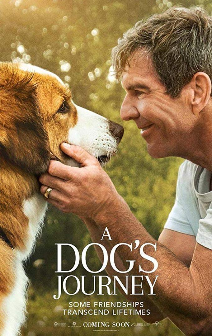 "Gail Mancuso ""Šuns tikslas 2"" (2019, trukmė 1:49)"