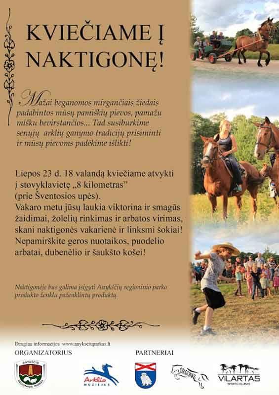 4-oji Naktigonė (2015)