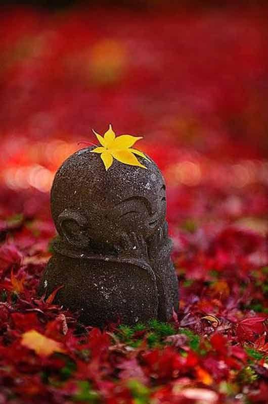 Tradicinė meditacija