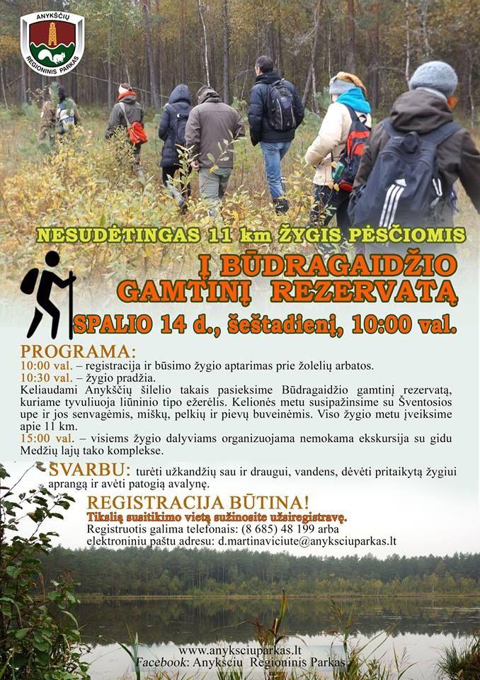 Nesudėtingas 11 km žygis pėsčiomis į Būdragaidžio gamtinį rezervatą