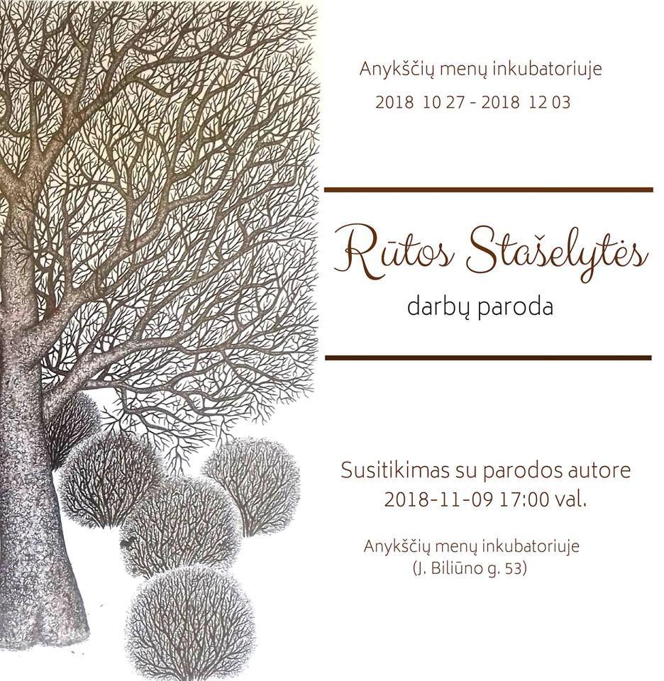 Rūtos Stašelytės darbų paroda / Susitikimas su parodos autore