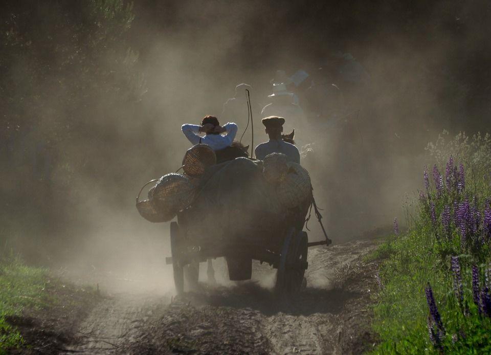 """Vlado Ščiavinsko fotoparoda """"Punskas - Anykščiai, Bėk bėk, žirgeli!"""""""