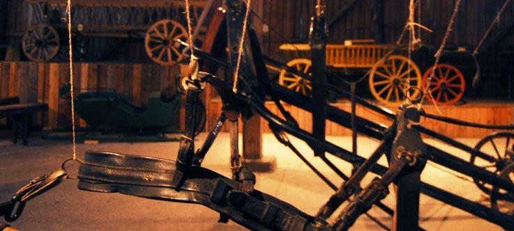 Arklio muziejaus edukacinės programos / Netepsi - nevažiuosi