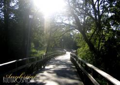 Pėsčiųjų takas