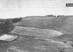 Šeiminiškėlių piliakalnis