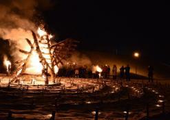 Apeiginio gaidelio deginimas