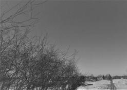 Peizažas žiemą