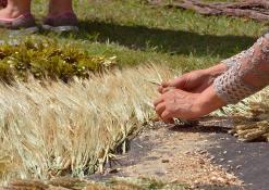 Panevėžio darbo rinkos mokymo centro floristinio kilimo fragmentas