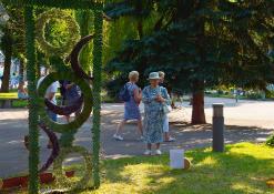 Traupio bendruomenės floristinis kilimas