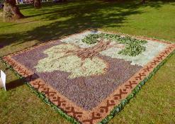 Raguvėlės moterų klubo floristinis kilimas