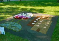 """UAB """"Ukmergės butų ūkis"""" floristinis kilimas"""