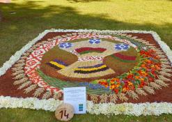 Klecko rajono (Baltarusija) Zubkovskajos vidurinės mokyklos floristinis kilimas