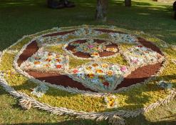 Debeikių moterų veiklos centro floristinis kilimas