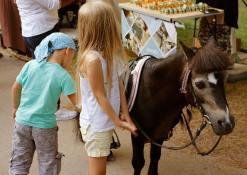 Arkliukas ponis