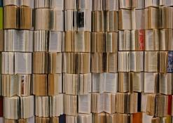 Paroda Anykščių L. ir S. Didžiulių viešojoje bibliotekoje