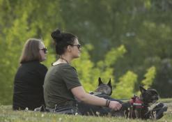 Merginos su šuniukais