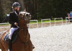 Žirgas ir jojikė