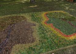 Floristinis kilimas