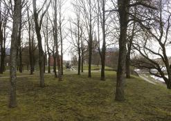 Balandis - Anykščių miesto pavasarinis peizažas