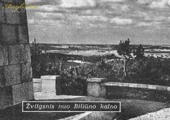 Žvilgsnis nuo Biliūno kalno
