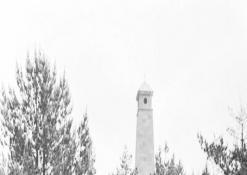 J. Biliūno kapas ant Liudiškių kalvos