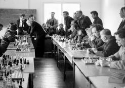 Šachmatininkai