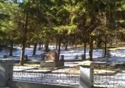 Karių kapinės