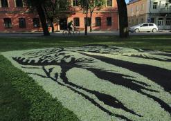 Anykščių rajono Šerių kaimo bendruomenės floristinio kilimo fragmentas