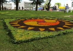 Anykščių rajono Mačionių kaimo bendruomenės floristinio kilimo fragmentas