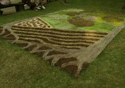 Anykščių rajono Naujųjų Elmininkų bendruomenės floristinis kilimas