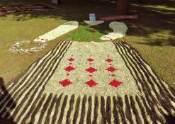 Anykščių rajono Traupio bendruomenės Floristinis kilimas