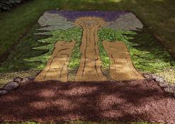 AMUIC Skiemonių skyriaus floristinis kilimas