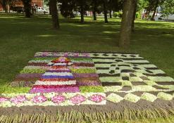 Ukmergės rajono Rečionių bendruomenės floristinis kilimas