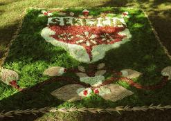 "UAB ""Virema"" floristinis kilimas"
