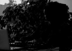DJ Nwando Ebizie