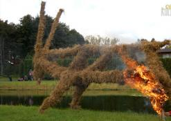Apeiginio ožio deginimas