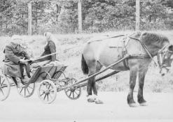 1975 m. birželio 12 d. Prof. Vasinauskas keliaudamas arkliu po Lietuvą užsuko į Naujuosius Elmininkus