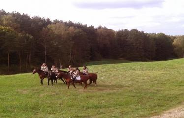 Šeimyniškėlių piliakalnio pilies statybų pradžios iškilmės - Žirgai