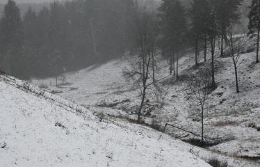 """Fotokonkursas """"Anykščiai ir apylinkės"""" (2008) - Vorutos piliakalnis"""