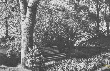 """Fotokonkursas """"Anykščiai ir apylinkės"""" (1959) - Čia mėgdavo sėdėti Antanas Vienuolis"""