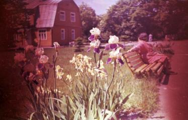 """Fotokonkursas """"Anykščiai ir apylinkės"""" (1977) - Ligoninės kiemas"""