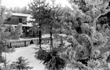 """Fotokonkursas """"Anykščiai ir apylinkės"""" (1953) - Žiema"""