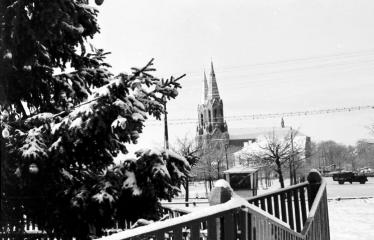 """Fotokonkursas """"Anykščiai ir apylinkės"""" (1956) - Anykščių miesto eglė"""