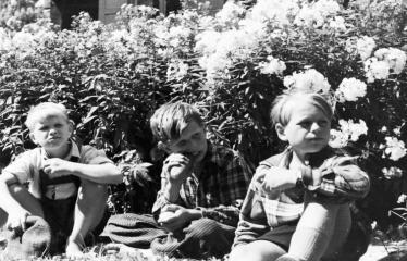 """Fotokonkursas """"Anykščiai ir apylinkės"""" (1957) - Filmuojamas fimas """"Žydrasis horizontas"""""""