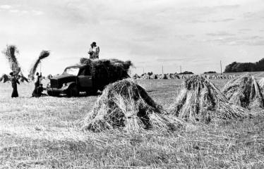 """Fotokonkursas """"Anykščiai ir apylinkės"""" (1957) - Darbymetis"""