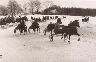 """2-oji Respublikinė tradicinės kultūros ir žirgų sporto žiemos šventė """"Bėk bėk, žirgeli!"""" (1979) - Ristūnų lenktynės"""