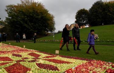 """Derliaus šventė """"Obuolinės"""" (2016) - Aukštaitiškos juostos dėlionė iš obuolių - Šventės svečiai apžiūrinėja obuolių juostą"""