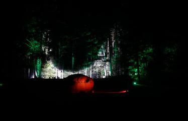 Turizmo naktis - Pramoginio traukinuko kelionė nuo Dainuvos slėnio link Medžių lajų tako komplekso - Puntuko akmuo