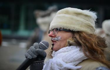 Miesto eglės įžiebimas - Jolanta Pupkienė